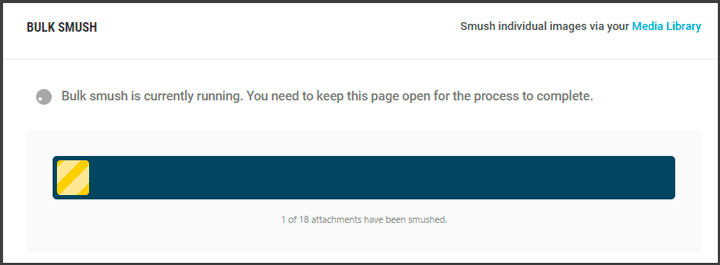 tutorial smush wordpress