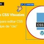 editores css para wordpress