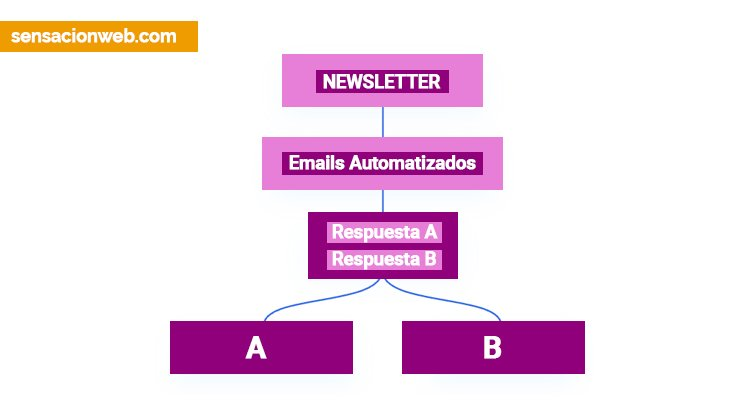 newsletter automatizada